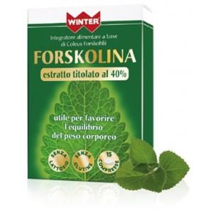 WINTER FORSKOLINA 15CPR