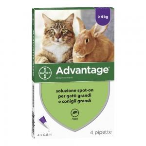 ADVANTAGE 4 Pip.0,8ml Spot-On