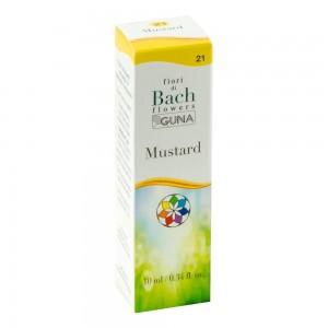 BACHFLOWERS 21 Mustard 10ml