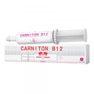 CARNITON B12 Pasta Sir.100g