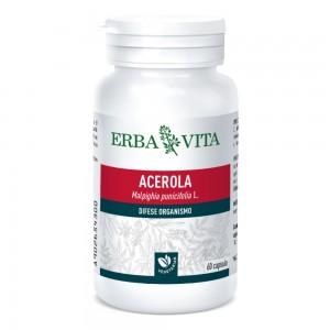 ACEROLA 60 Cps 550mg       EBV