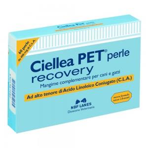 CIELLEA Pet 60 Perle