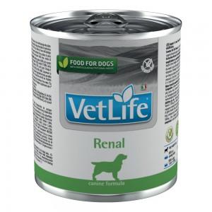 VET LIFE DOG RENAL 300G